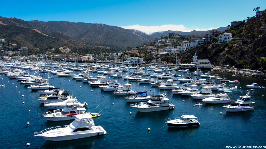 Catalina Island travel guide 4