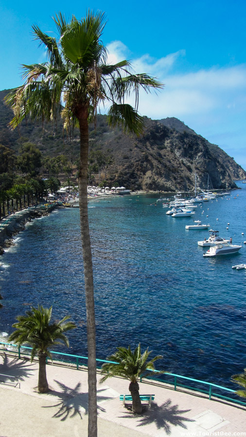 Avalon, Catalina Island - Descanso Beach and harbor seen from the Casino top floor.