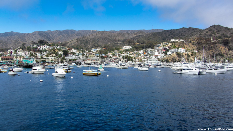 Avalon, Catalina Island - Beautiful view of the port of Avalon