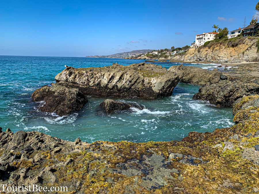 Laguna Beach, California - Rocky Cove near Sugarloaf Point