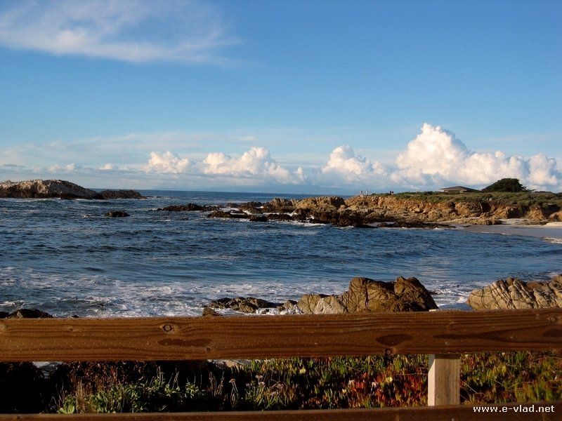 Beautiful ocean scenery on the 17 Mile Drive in Monterey, California.