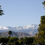 Palm Springs, California is a true oasis in the desert
