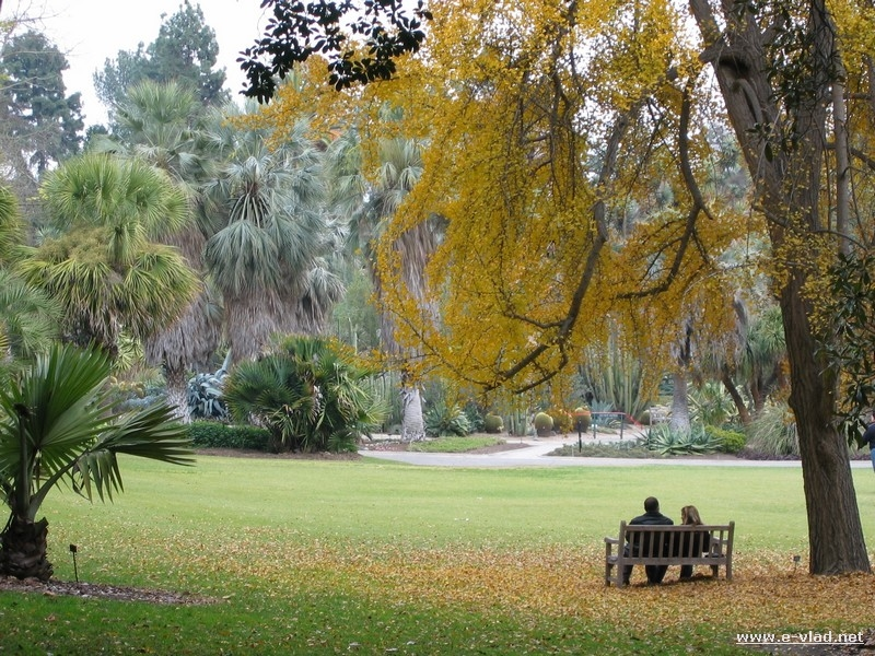 Pasadena, California - Couple resting on a bench surrounded by beautiful fallen leaves