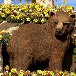 Travel photos from Pasadena Rose Parade Floats