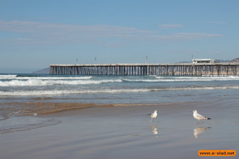 The beautiful beach and pier at Pismo Beach