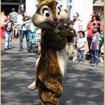 Travel photos from Disneyland California