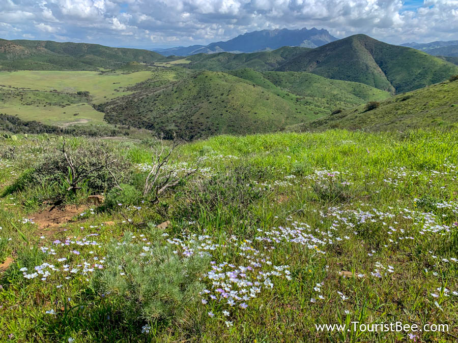 7 Best Places to See at Point Mugu State Park 4