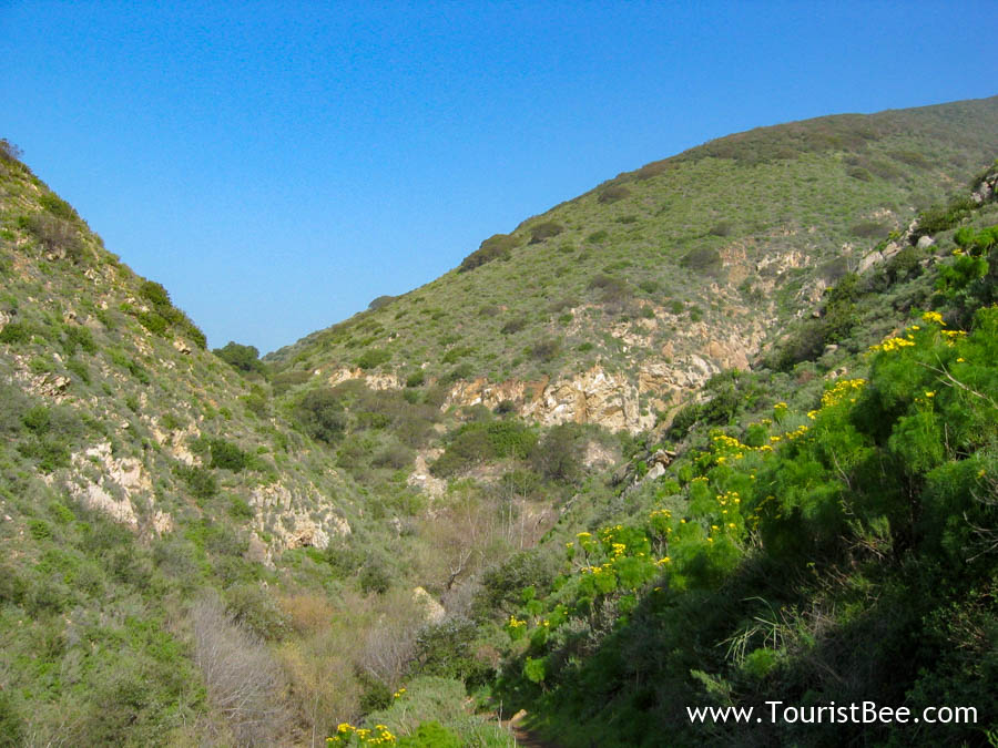 7 Best Places to See at Point Mugu State Park 7
