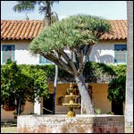 Travel photos from Santa Barbara Mission