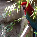 Santa Barbara, California – travel pictures from Santa Barbara Zoo