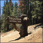 Travel photos from Sequoia Moro Rock