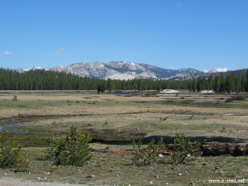 Tuolumne Meadows in mid April when the snow has melted.