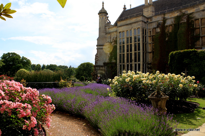 Burghley House, England - Beautiful flowers in the garden