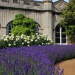 7 beautiful British gardens