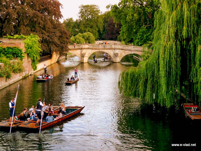 People punting on River Cam next to Clare College.