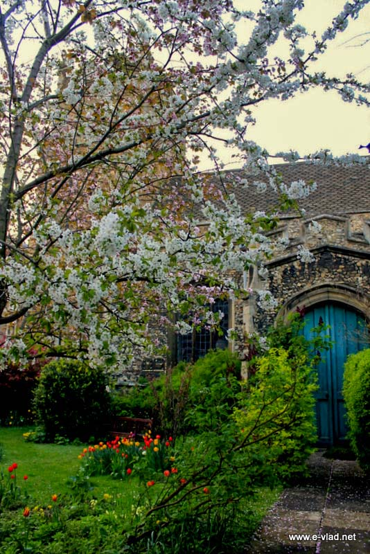 Beautiful old entry door leading to side entrance to St Botolph's church in Cambridge.