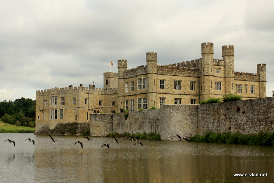 Flock of birds flying near Leeds Castle in Kent, England