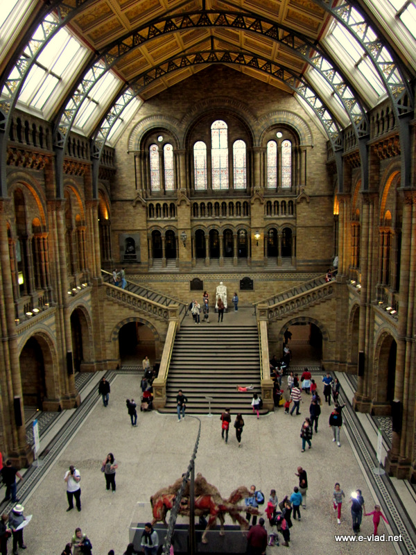 The impressive main entrance hall of the Natural History Museum.