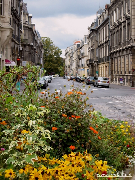 Flowers on the streets of Reims, France.