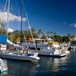 Top Places to Go Sailing in the US