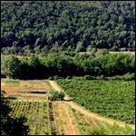 Travel photos from Monteriggioni
