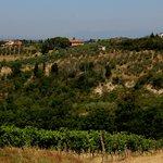 Travel photos from San Gimignano