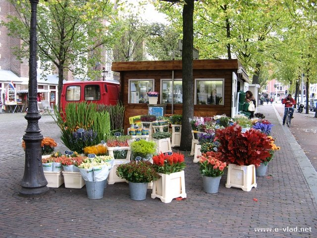 Amsterdam, Netherlands - Flower Shop on the street