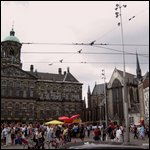 Travel photos from Amsterdam in summer