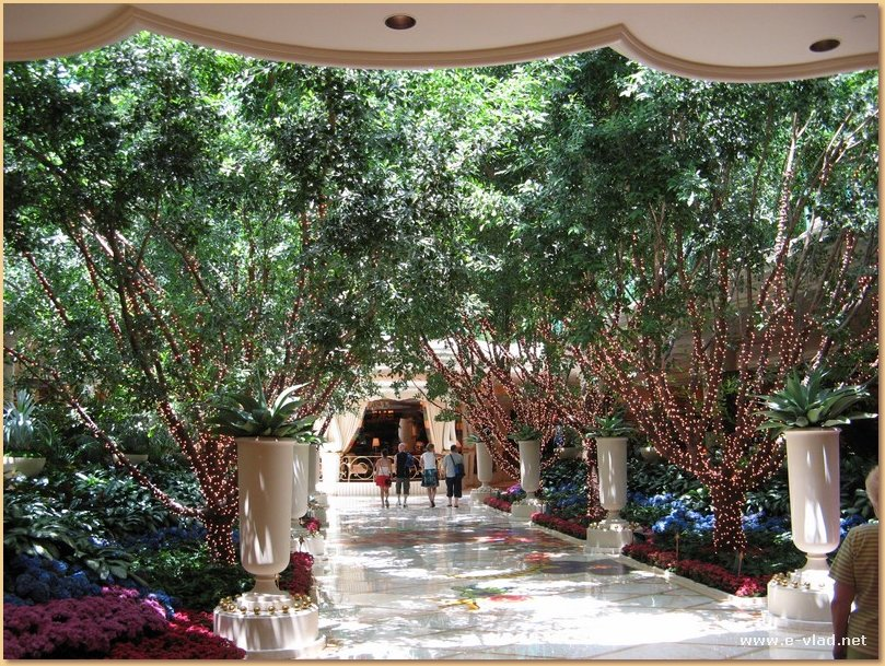 The Wynn, Las Vegas, Nevada - Beautiful trees and flower arrangements along the main shopping alley at The Wynn.