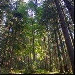 Travel photos from Piatra Craiului National Park