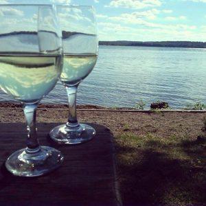 Fingerlake wineries